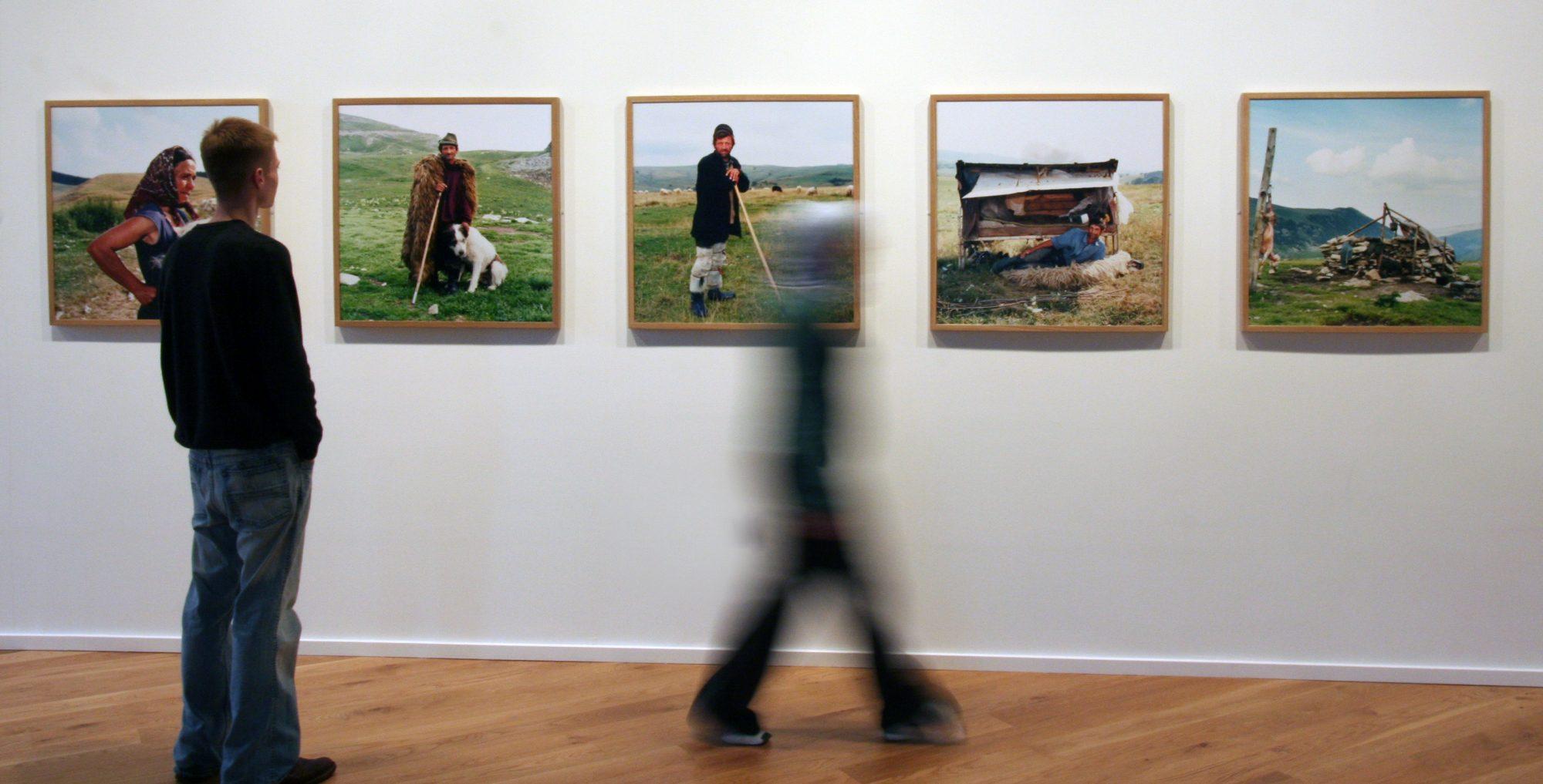Install shot from Tessa Bunnies exhibition
