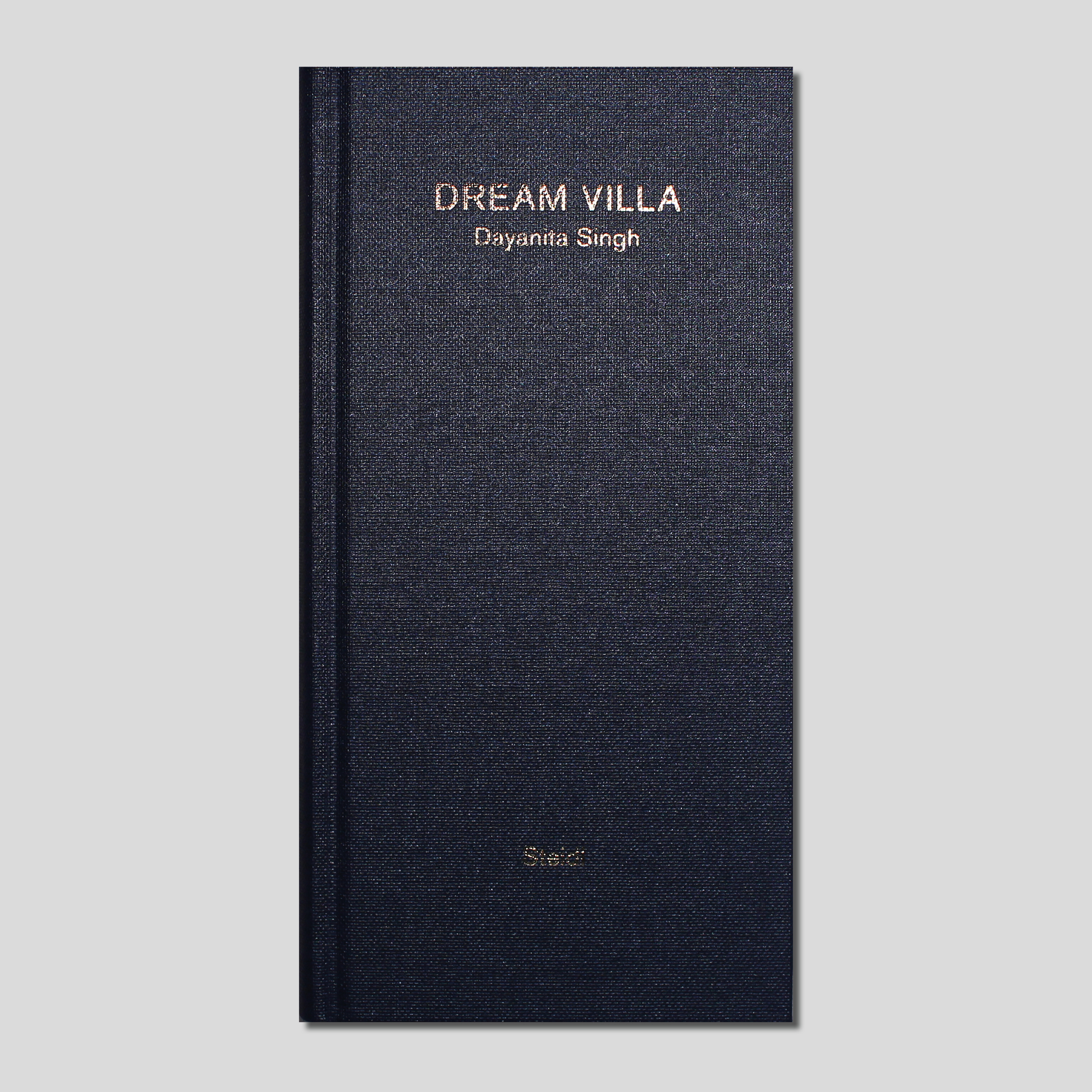 Dream Villa by Dayanita Singh