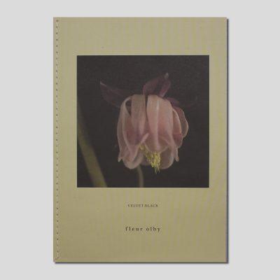 Velvet Black by Fleur Olby