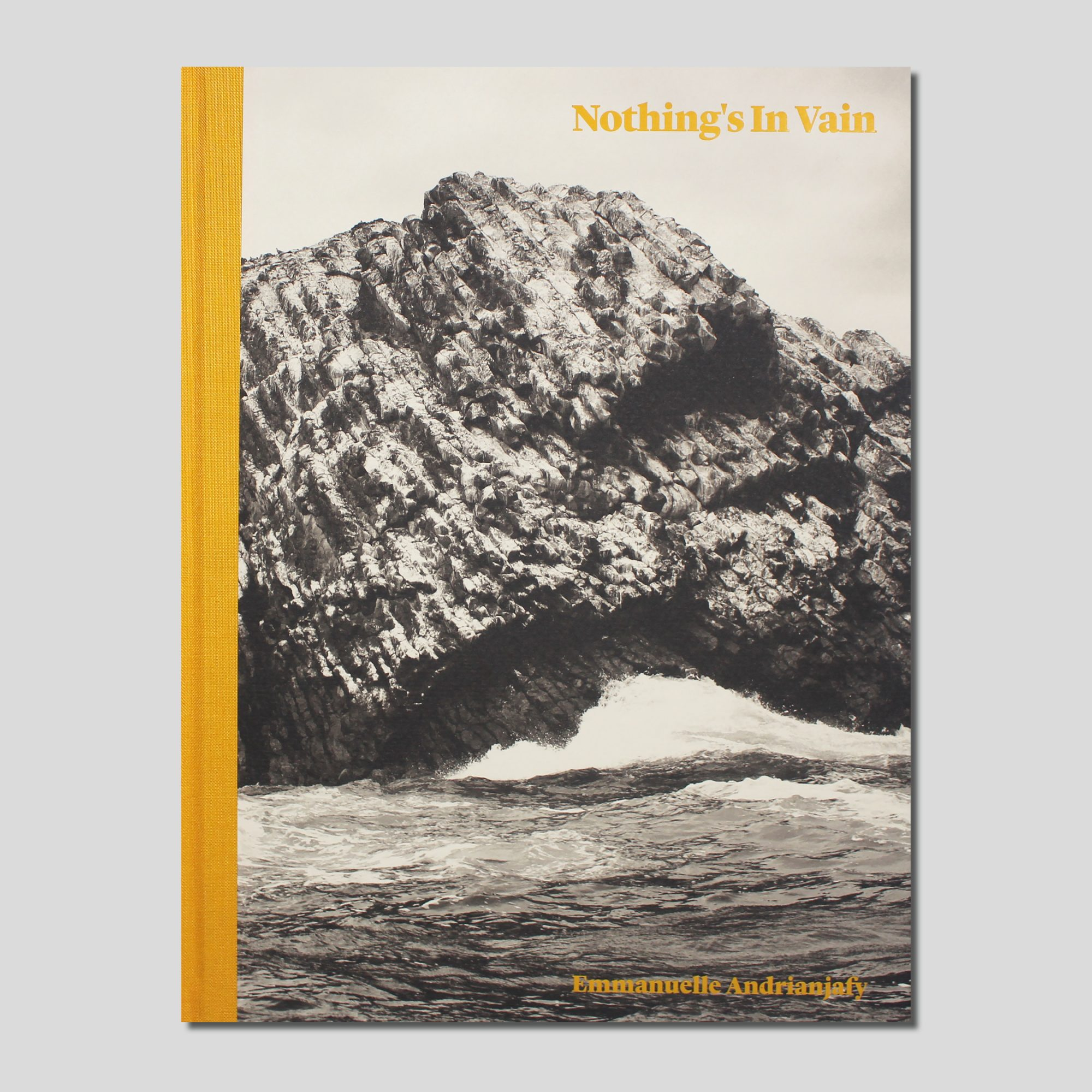 Bookcover: Nothing's In Vain