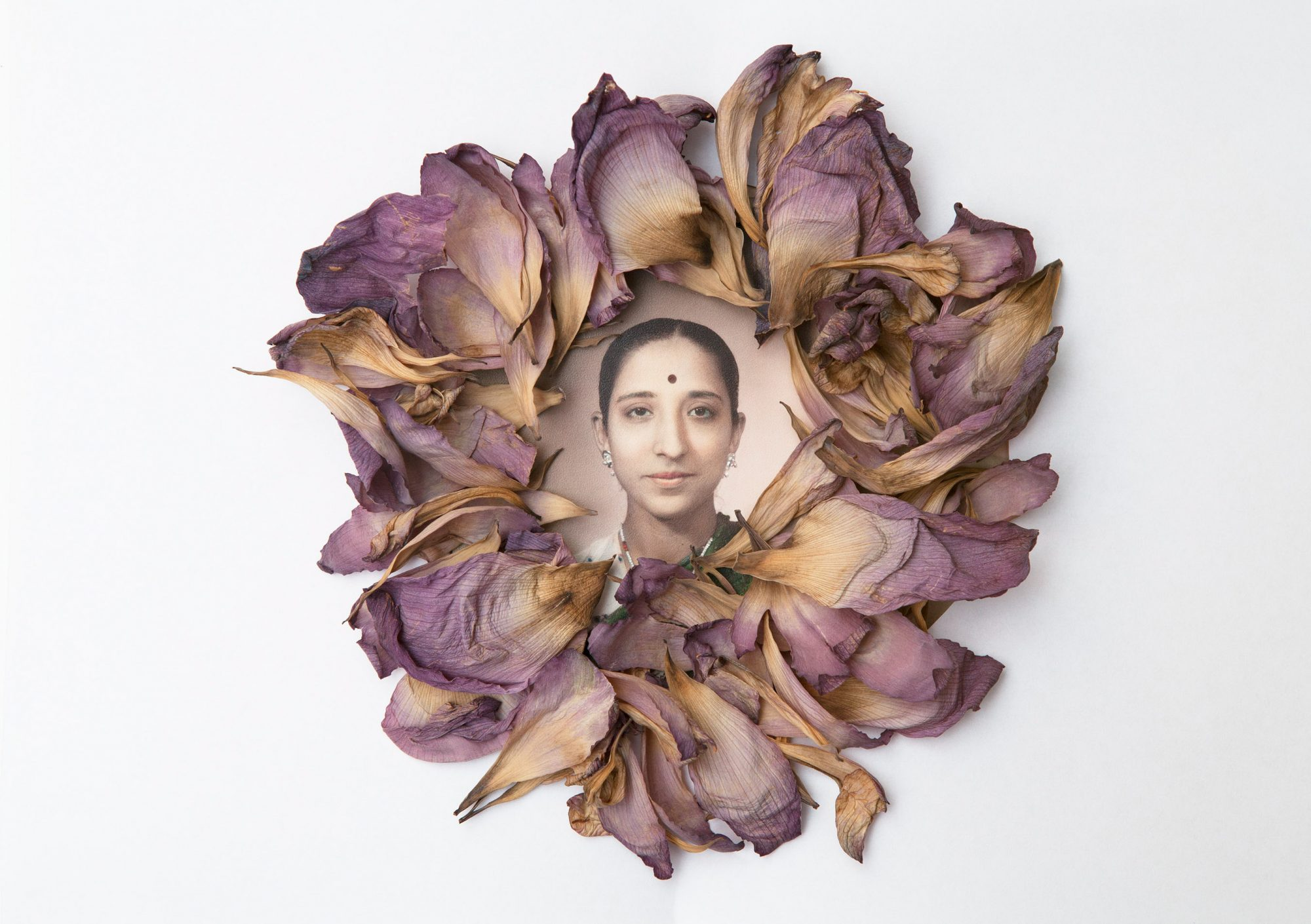 Nalini in bloom © Arpita Shah