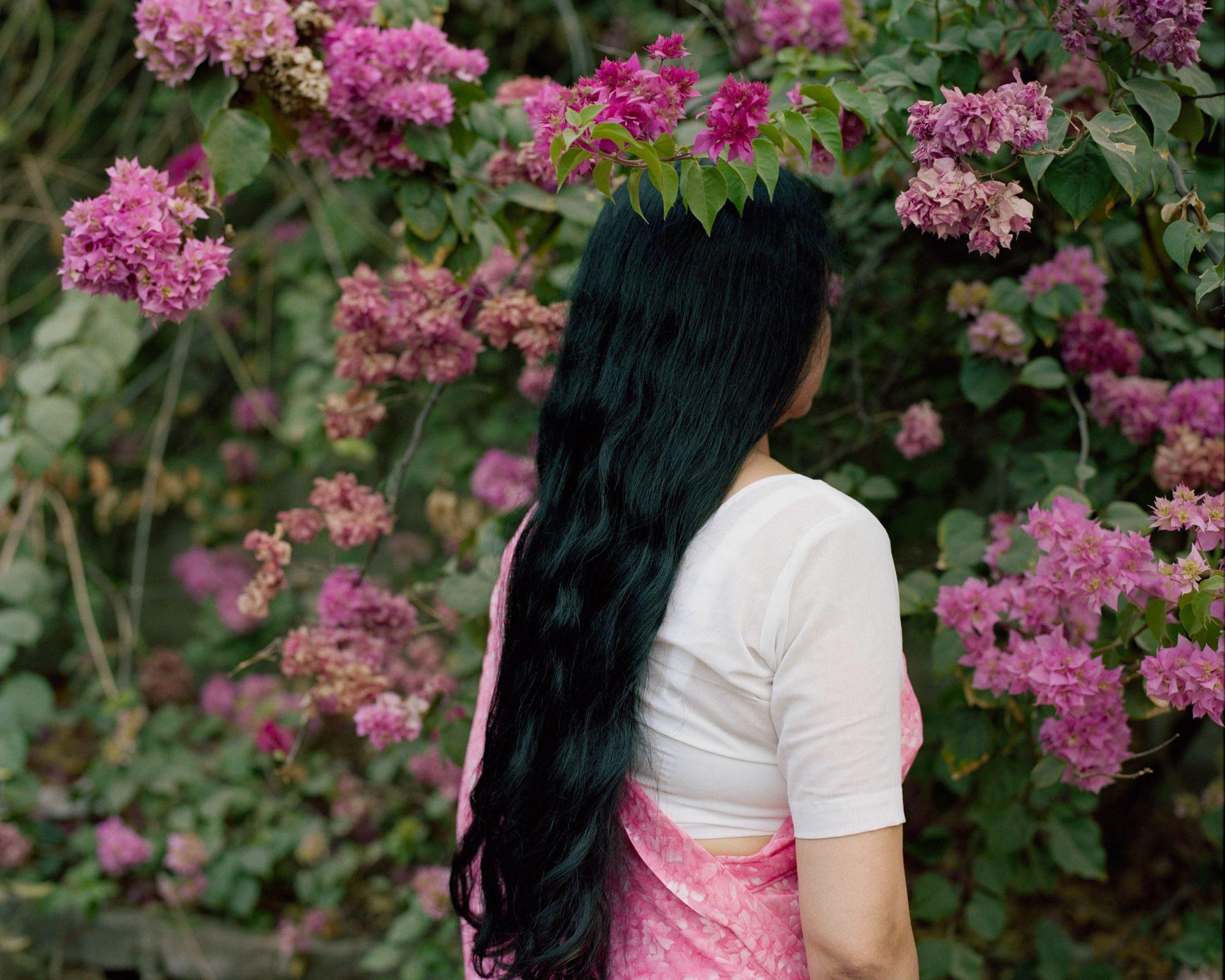 Bougainvillaea Maharas © Arpita Shah