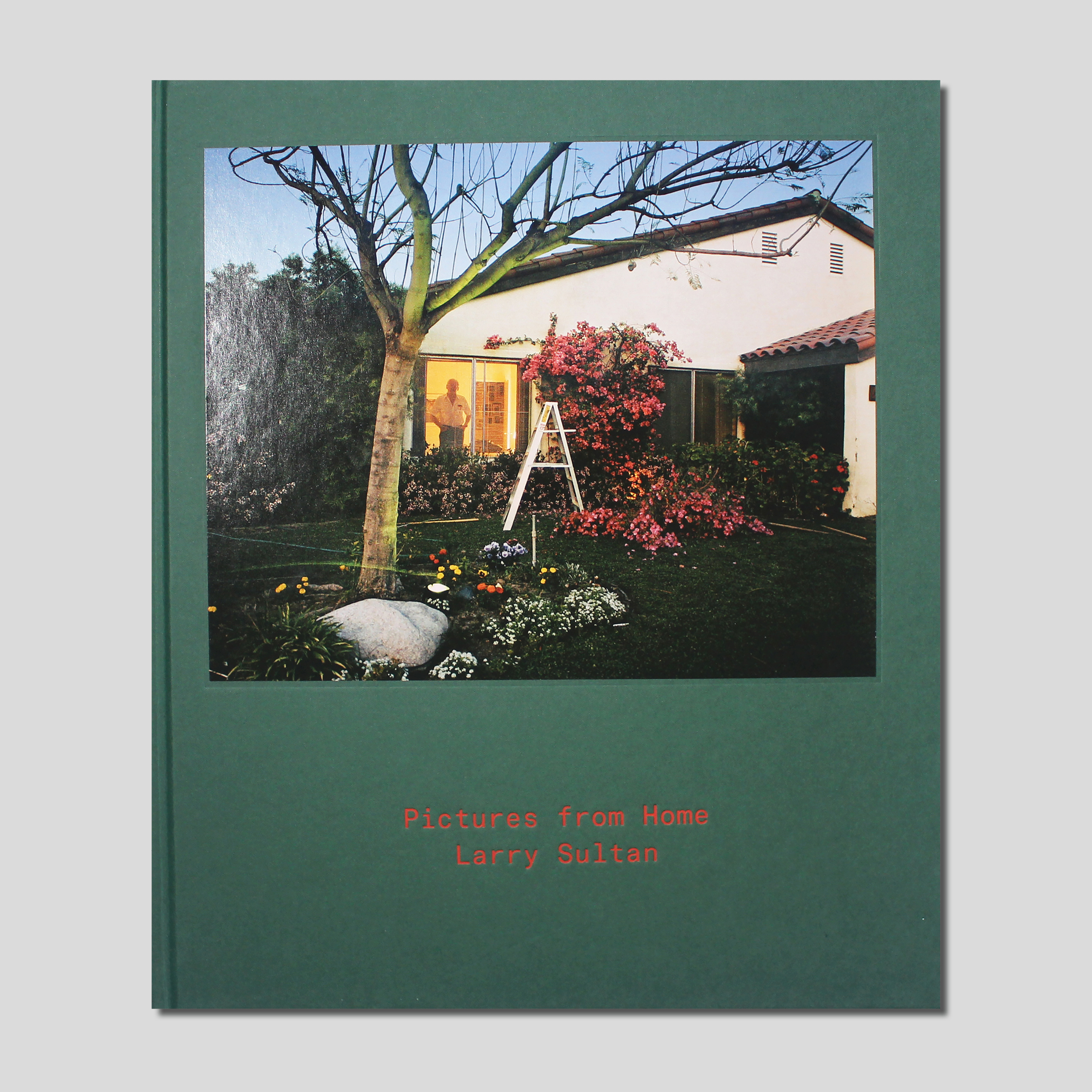 Book cover of Pictures from Home
