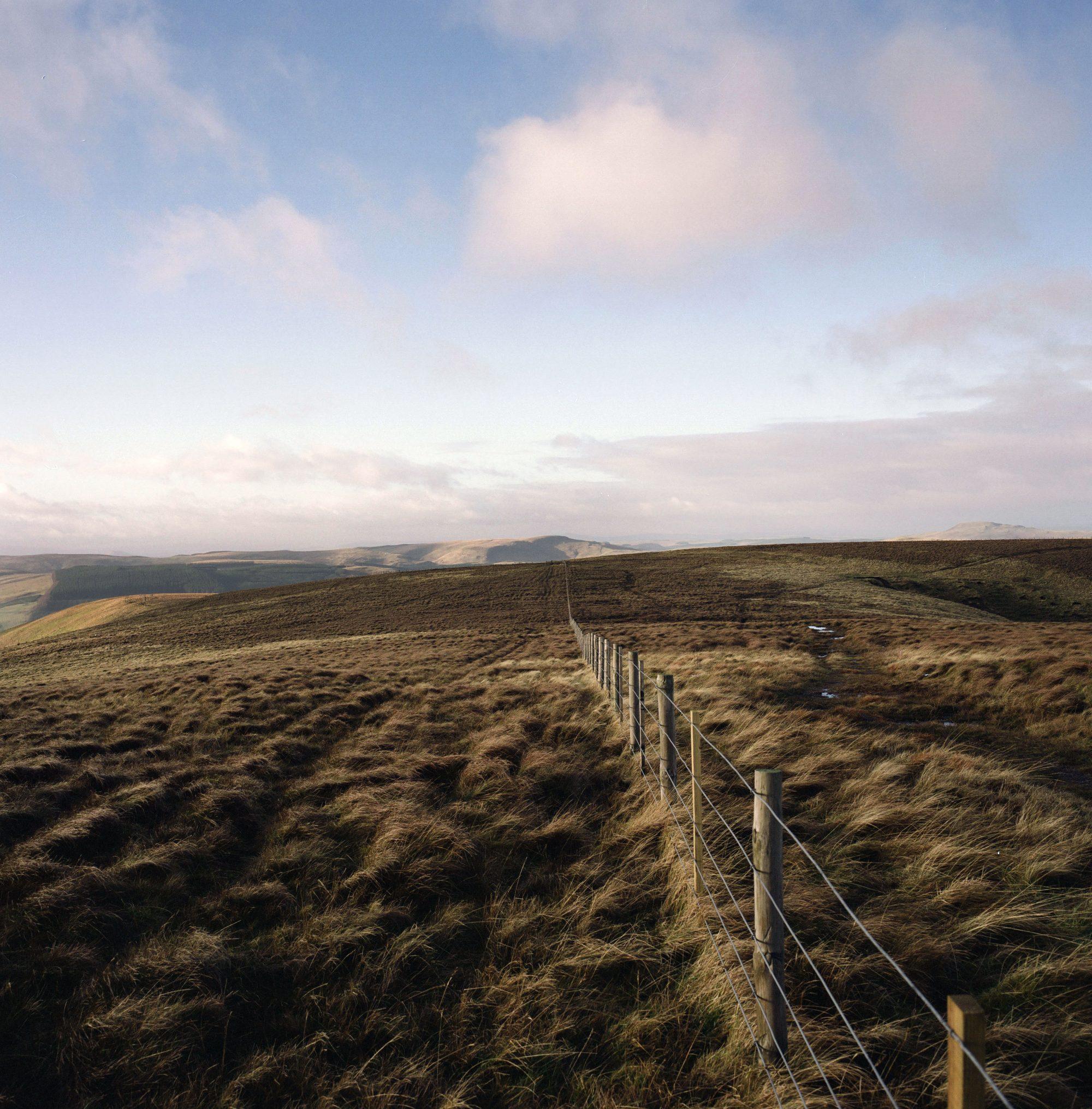 Border fence, Cheviot Hills, 2014 © Colin McPherson