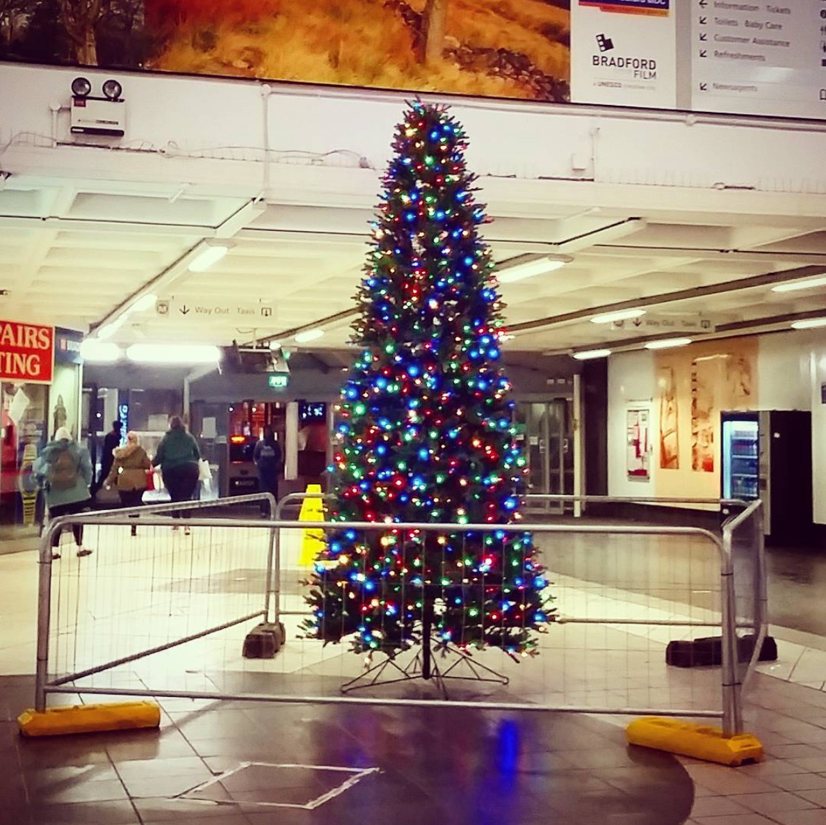 Help us decorate our Christmas Tree — Impressions Gallery