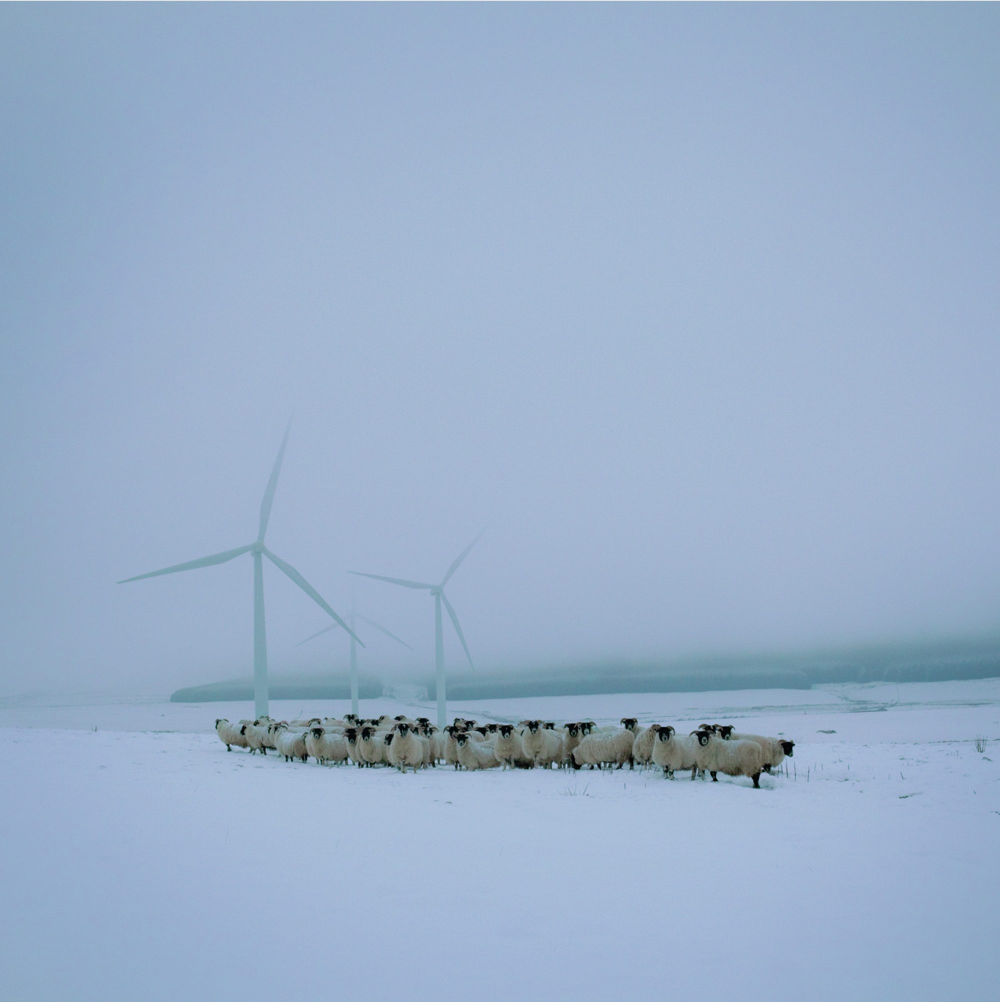 Lauder, Scottish borders © Sophie Gerrard