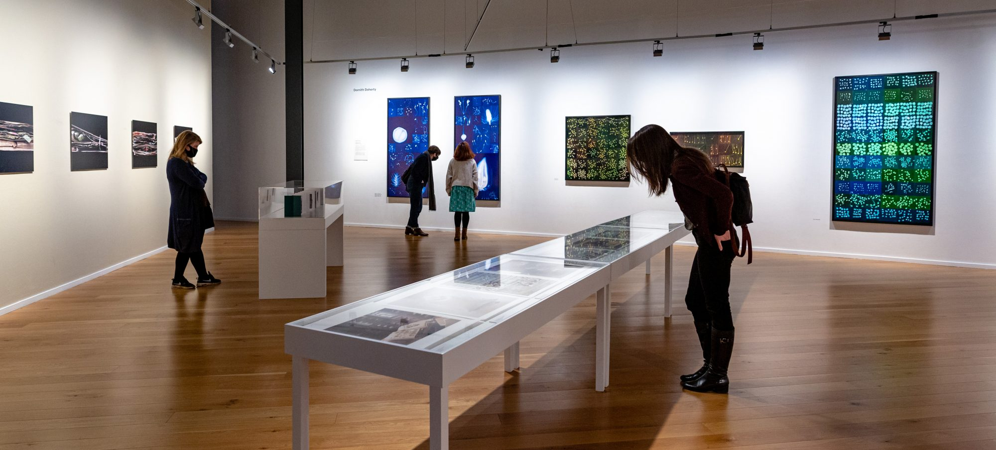 Visitors looking at the exhibition Seedscapes