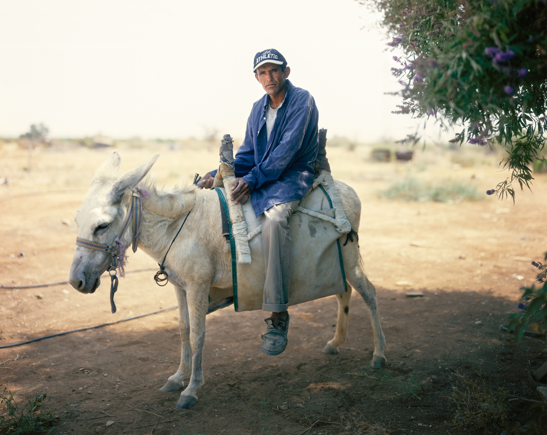 The Man on the White Donkey, HaBiqah, 2006. © Yaakov Israel