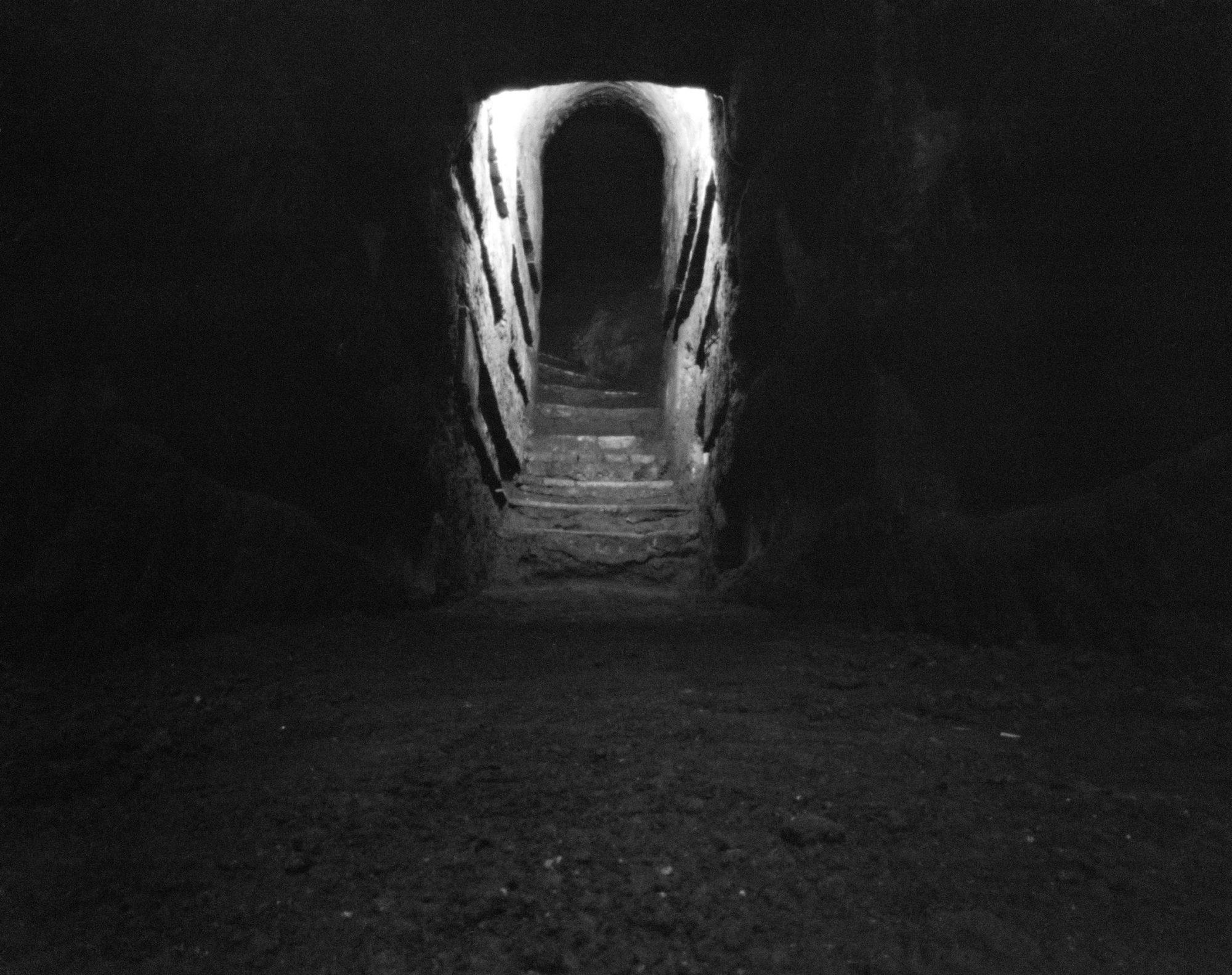 Catacomb 2009 © Fiona Crisp