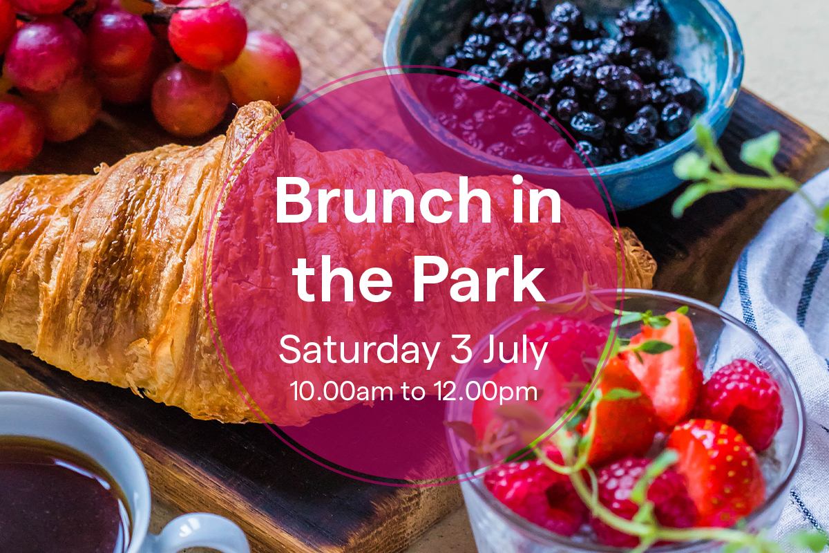 Brunch Picnic in the Park — Impressions Gallery